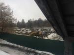 Ярославские градозащитники обеспокоены экскаватором на Волжской набережной