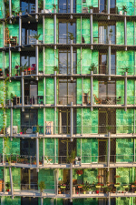Зеленые фасады