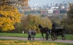 Территорию заповедника «Коломенское» сократят для строительства метро