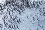Земли природоохранных территорий можно купить в собственность
