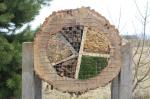 """""""Общежитие"""" для насекомых появилось в региональном парке Жагарес"""