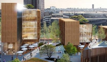 Открытие ученых позволит создавать деревянные небоскребы