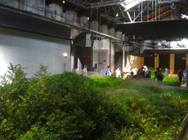 Вид экспозиции «Итальянский лес» (бюро OSA architettura e paesaggio) павильона Италии. Фото Анны Вяземцевой