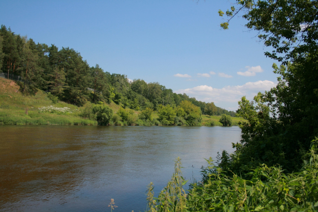 Вид на противоположный берег реки