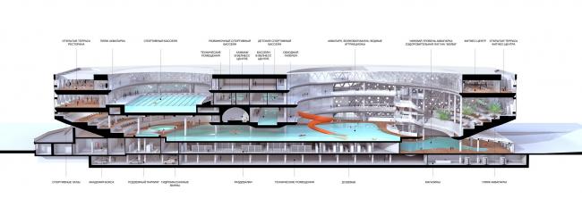 Реконструкция бассейна «Лужники», Финалист конкурса, 2014. Трехмерное продольное сечение © ДНК аг