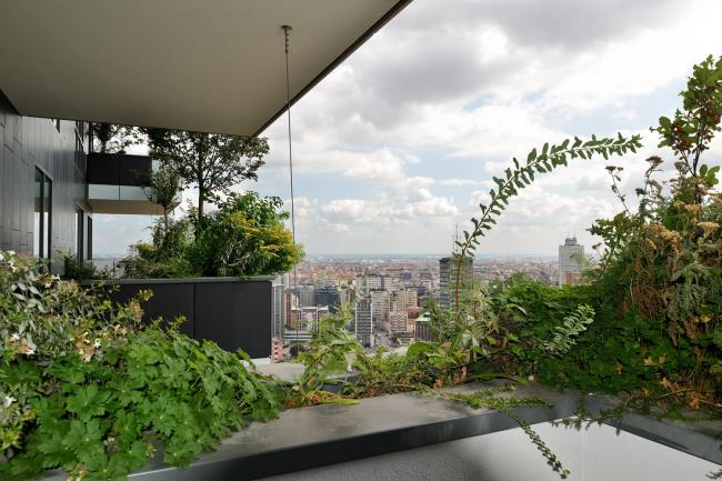 Фото | Вид на Милан с балкона башни Bosco Verticale