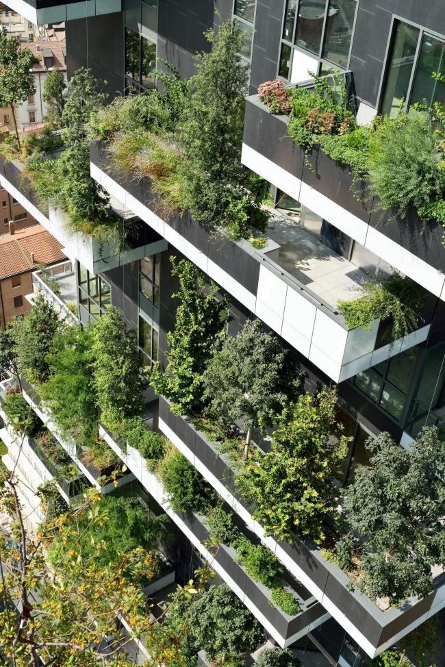 Зеленый фасад башни Bosco Verticale