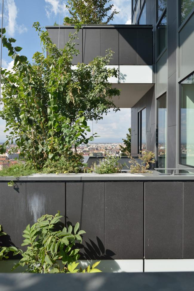 Фото | Зеленые небоскребы Bosco Verticale в Милане
