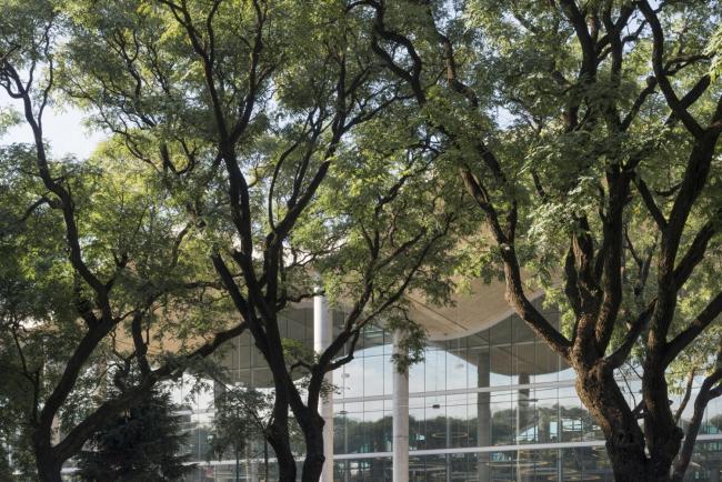 Ратуша Буэнос-Айреса © Foster + Partners