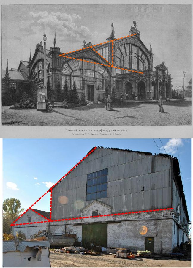 Фото М.П. Дмитриева (вверху). Фото Надежды Щёмы (внизу).