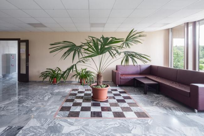 Санаторий «Вороново». Фотография © Денис Есаков