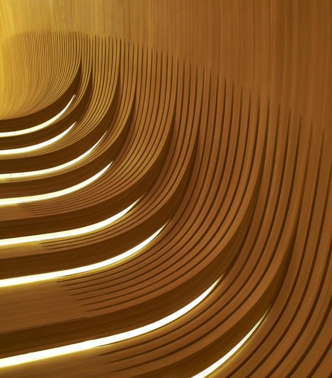 Центр Гейдара Алиева в Баку © Hufton+Crow