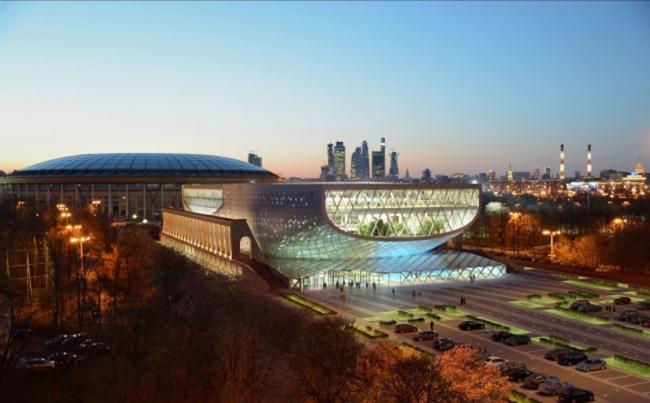 Реконструкция бассейна «Лужники», Финалист конкурса, 2014. Вид с метромоста © ДНК аг