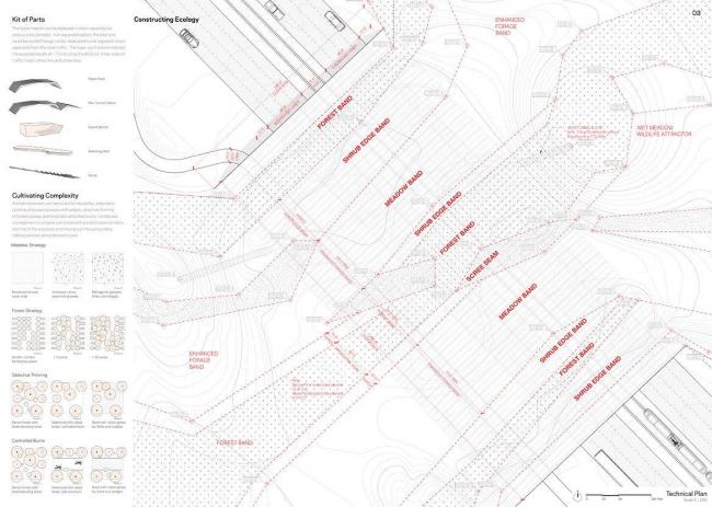 Майкл Ван Валкенберг и HNTB Engineering. Надземный переход шоссе для диких животных © ARC competition