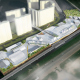 Торгово-развлекательный комплекс «Дрожжино-2» (конкурсный проект), Москва