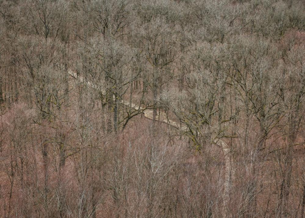 Смотровая башня в парке Camp Adventure<br>Фото © Rasmus Hjortsh&#248;j