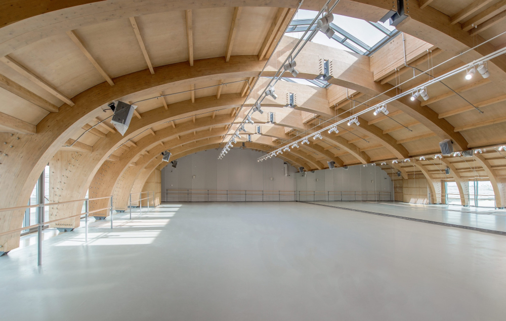 Boris Eifman Dance Academy, 2nd stage. Project. Rehearsal Hall<br>Copyright: Photograph © Margarita Yavein