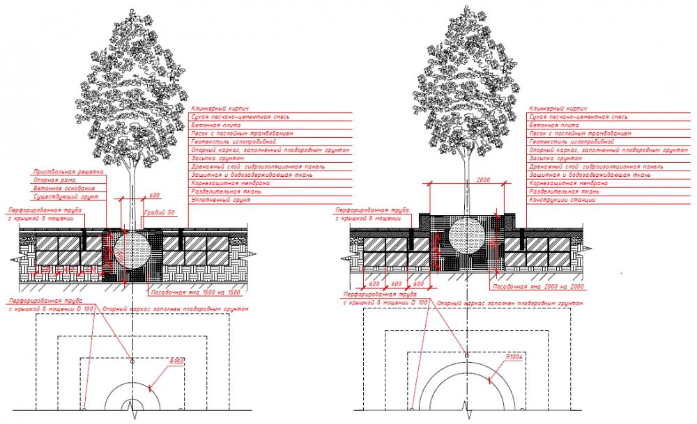Проект посадки дерева в уровне мощения и в приподнятый газон. Сокольническая площадь<br>© Megabudka