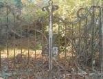 Дачи Серебряного века в Комарово гниют и разрушаются прямо на глазах