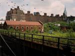 Новая жизнь: как в Нью-Йорке железную дорогу превратили в парк