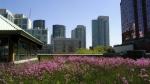 Столичные парки возьмут на новую высоту