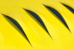 Желтый цвет фирмы