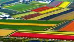 Где лучше всего жить в Нидерландах: исследование