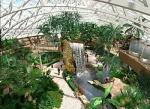 Зоопарк в Юнтолово остался без альтернативы