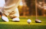 Будут ли в Пушкине строить гольф-клуб?
