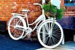 Общественный велотранспорт как проверка на клептоманию