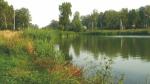 На парк «Россия» Шойгу понадобится 400 млрд рублей