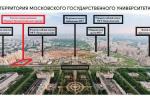 У МГУ и Политеха появится просветительский центр