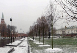 Вырубка Александровского сада: Градозащитник, эколог и директор питомника о том, как надо было делать и что теперь будет