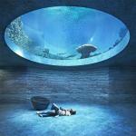 «Базель на море»