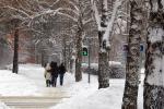 Минкульт РФ объявил новосибирский Академгородок объектом культурного наследия