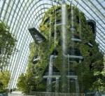 В центре Омска разобьют зимний сад под стеклянным куполом