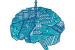 «В «умном городе» все должно быть рационально»
