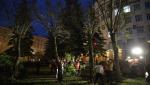 Вырубка деревьев в Новосибирске: деньги против общественного мнения?