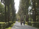 Измайловский парк станет на 30 гектаров больше