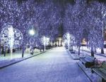 Зимой и летом — разным светом