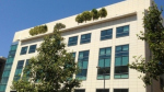 Москвичам заплатят за озеленение крыш