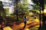 Парк искусственных газонов