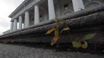 Смольный отдал Биржу Эрмитажу под музей гвардии и геральдики