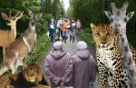 В Петербурге ищут место для нового зоопарка