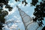 Москвичи поддержат башню