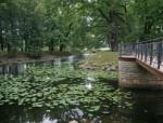 Арбитражный суд вышел в основное заседание по делу о Лопухинском саде