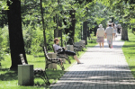 Из «Сокольников» планируют сделать Гайд-парк