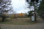 Два гектара дендропарка благоустроят архитекторы Новосибирска