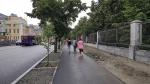 Велодорожка у Дендрария. Что получилось и что не получилось