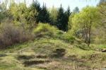 В Красноярске не разрешили строить жилые дома на территории дендрария